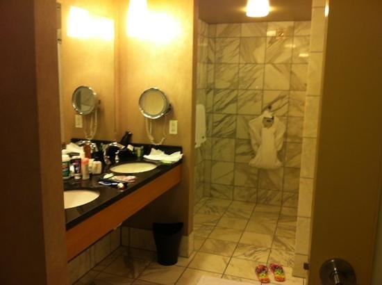 The Westin Detroit Metropolitan Airport:                   large- beautiful bathroom