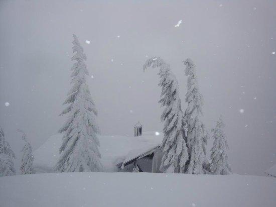 Ferienhotel Fernblick: Schneegarantie im Winterurlaub im Montafon