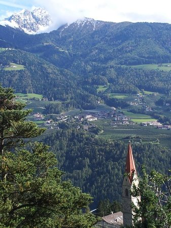 Hotel Sonnenhof :                   Balcony view