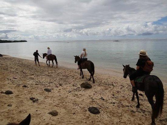 Fiji Hideaway Resort & Spa:                                     Riding  horses along the beach