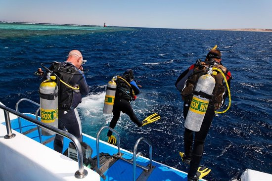 Trip To Egypt - Day Tours: Diving In Red Sea