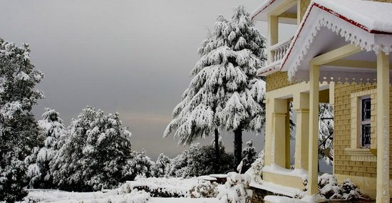 Binsar, Indien: Snow Bound