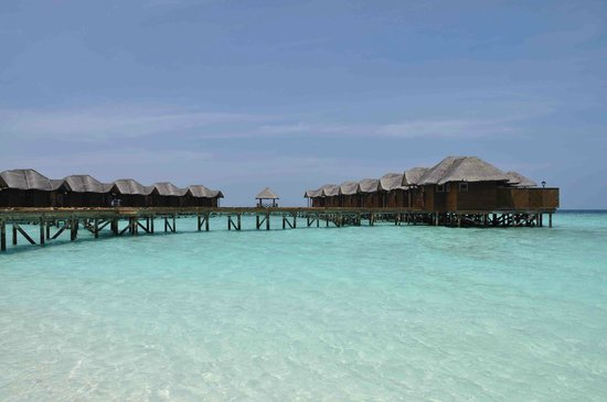 Fihalhohi Island Resort:                                     Bungalows