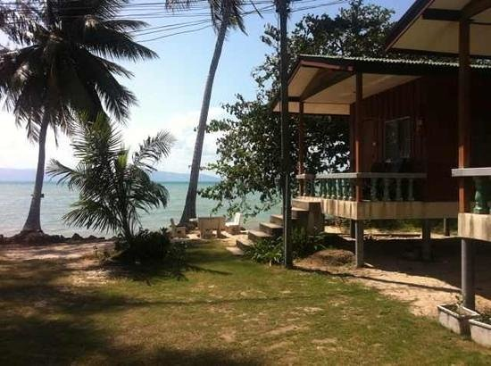 Blue Lotus Resort:                   view from bungalow