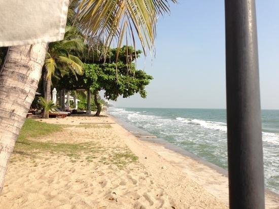 Asara Villa & Suite:                   海岸
