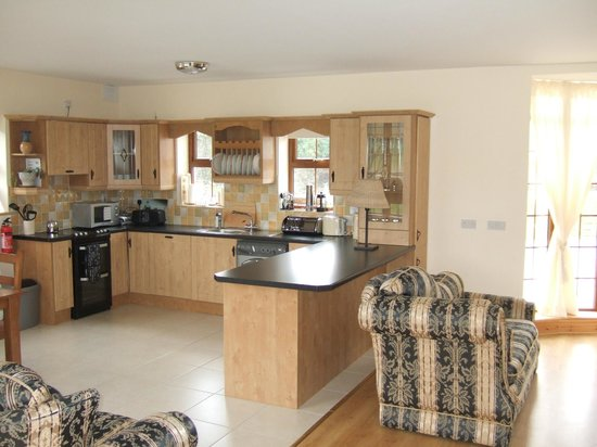 Knockanore Farm: Kitchen Living Beech Lodge