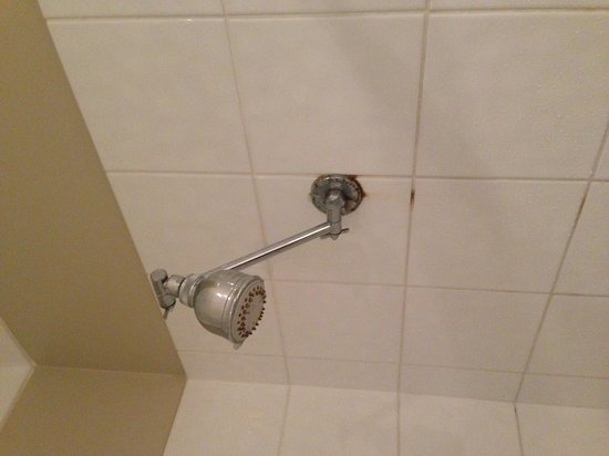Mont Clare Boutique Apartments:                                     Rusty & leaking showerhead