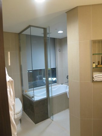 Lotte City Hotel Mapo:                   Bath, shower, and toilet
