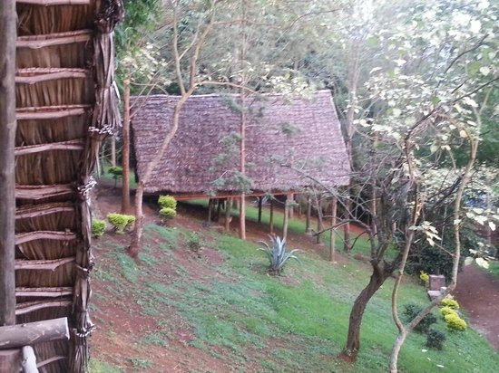 Karama Lodge & Spa:                   Photo of a Bungalow from our balcony