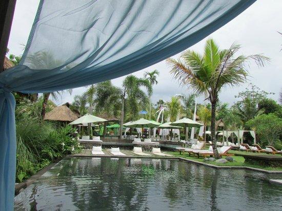 The Mansion Resort Hotel & Spa:                   デイベッド等沢山あってくつろげます 屋根ありスコール時もOK