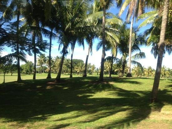 The Westin Denarau Island Resort & Spa Fiji:                   golf course from a roadway