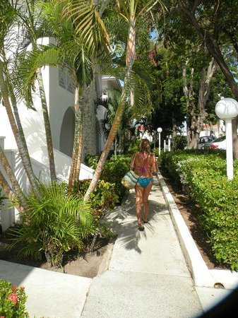 Simpson Bay Resort & Marina:                   walking the resort...