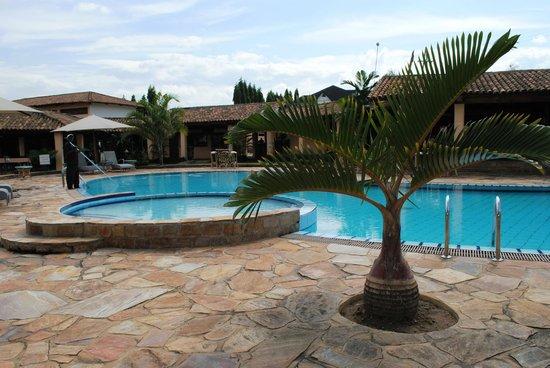 """Hôtel de la Palmeraie : Palmier """"bouteille"""" au bar piscine"""