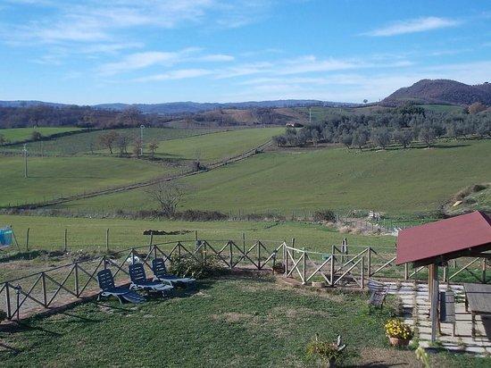 Agriturismo La Valle degli Ulivi: PANORAMA DAL GIARDINO