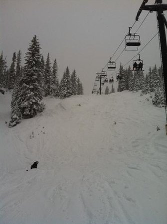 Wolf Creek Ski Lodge:                   Wolf Creek skiing