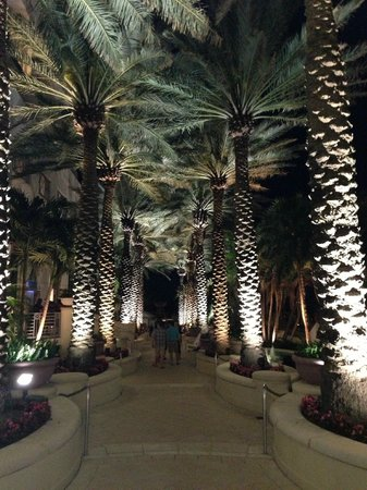 Loews Miami Beach Hotel: Night Time Walk