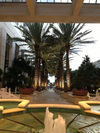 Loews Miami Beach Hotel: One last look befoer we leave.