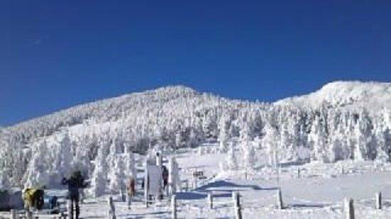 Pilatus Tateshina Ski Resort:                   ピラタス蓼科
