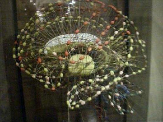 Fantasma di cervello: fotografía de Museo di Anatomia Umana, Turín ...