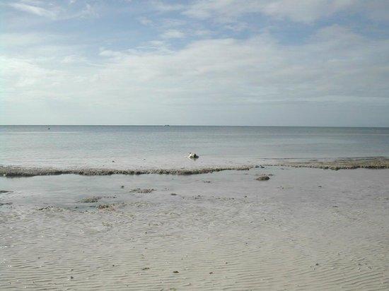 เอสคายา บีช รีสอร์ท แอนด์สปา:                                     me relaxing on the beach