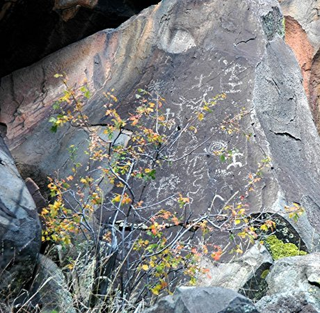 Beale Wagon Road Historic Trail :                   Petroglyphs in Laws Springs area