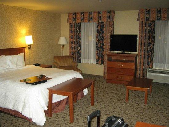 Hampton Inn And Suites Montreal: tv