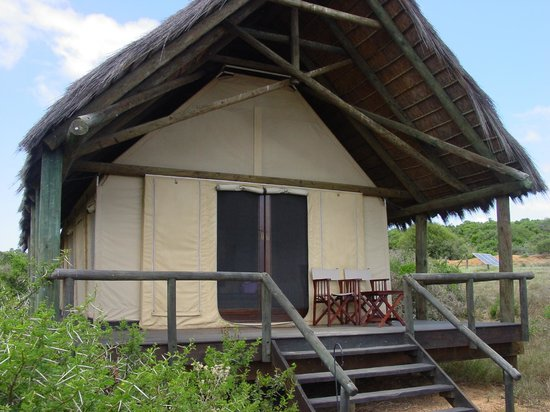Gorah Elephant Camp:                                                       Hemmingway tent