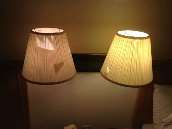 Super 8 Phillips:                                                       Torn lampshades