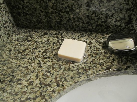 BEST WESTERN Ptarmigan Lodge: no soap dish