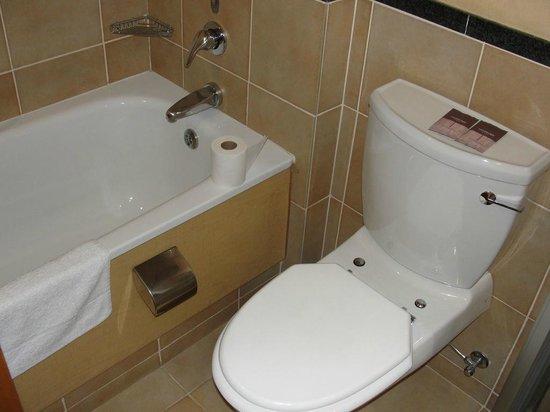 Protea Hotel by Marriott Johannesburg Wanderers:                   Banheiro