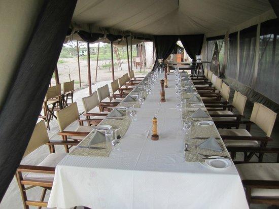 Olakira Camp, Asilia Africa:                   A rable !