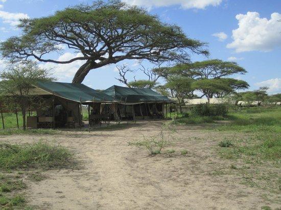 Olakira Camp, Asilia Africa:                   Entrée du camp !