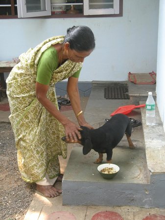 Kodianthara Heritage Home:                                     Molly - a wonderful cook and  Tupee  - a cheeky dachsund