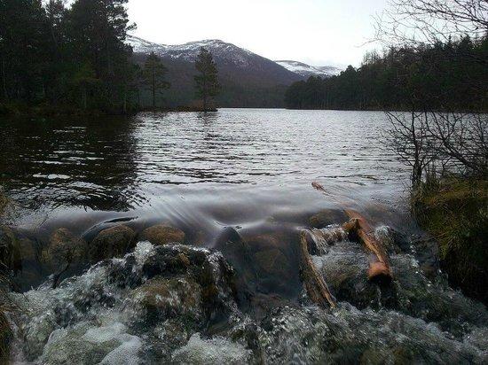 Loch an Eilein照片