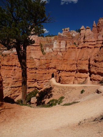 Navajo Trail : Bryce Canyon National Park. Sunset Point ...