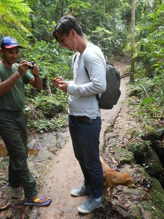holding a snake - Picture of Lanka Tracker - Day Tours, Matara