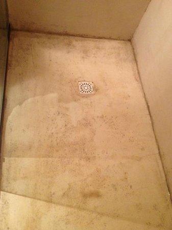 Brisas de La Pedrera Boutique Hotel:                                                       piso de la ducha con hongos