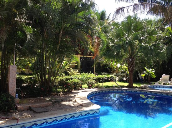 Giardino Tropicale:                   Piscina albergo                 