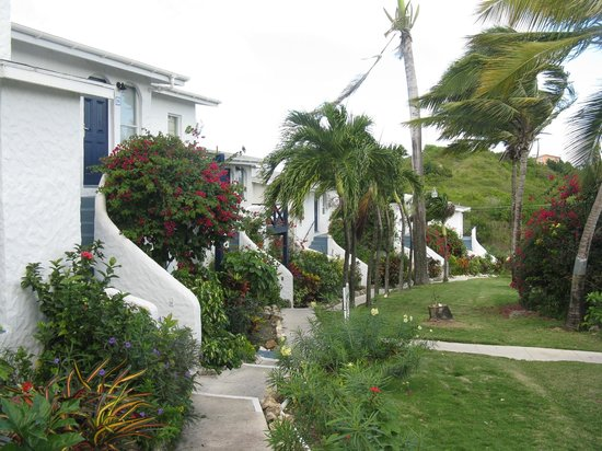 Trade Winds Hotel:                   Garden path at Trade Winds
