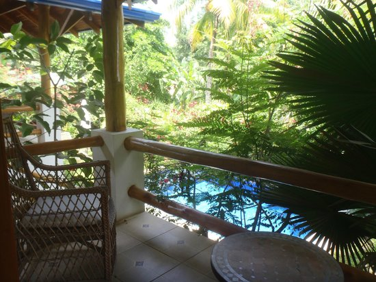 Blue Surf Sanctuary: View from your bungalow of pool and gardens