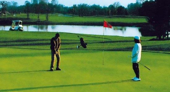 Golf Hotel Milano: Golf Course