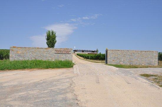Entrance to the Sonberk Winery