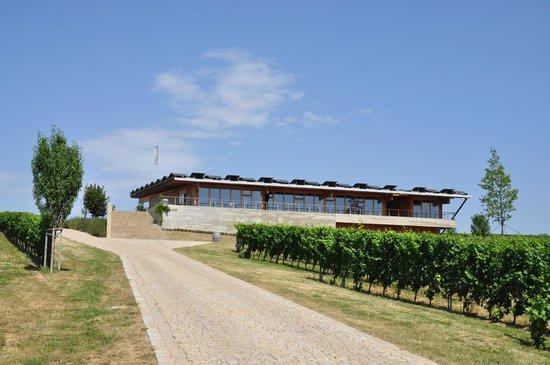 Sonberk:                   Winery Building