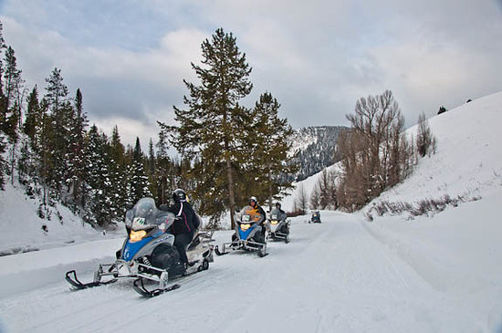 Wyoming:                   Snowmobile Tour