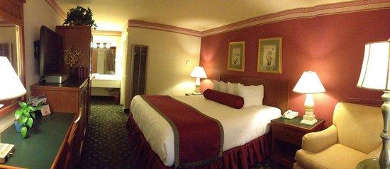 Dow Villa Motel : Standard King Bed