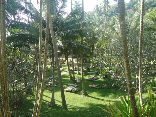 Cape Panwa Hotel: Tropical!