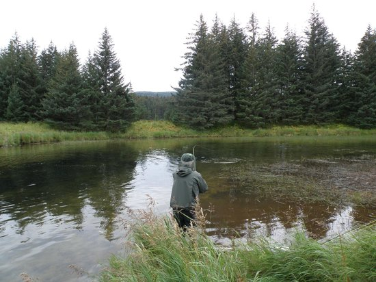 A Smiling Bear B&B: Remote fishing at Afognak river