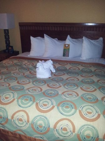 Hilton Grand Vacations at the Flamingo:                   Our very comfortable bed