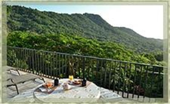 Ceiba Country Inn: View from terrace