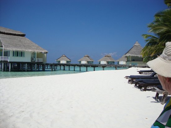 Ellaidhoo Maldives by Cinnamon: Beach
